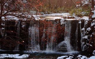雪の写真・画像素材[327048]