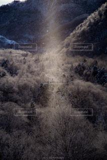 雪に覆われた山 - No.982576
