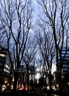 No.331534 風景