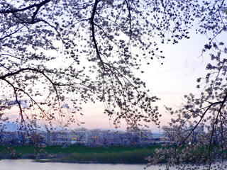 No.377253 風景