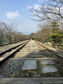 京都  蹴上インクラインの写真・画像素材[807106]