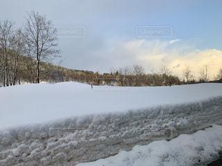 雪景色の写真・画像素材[1699837]