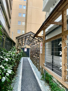 縁結び 野中神社の写真・画像素材[1705740]