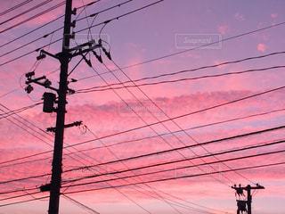 ピンクの写真・画像素材[327750]