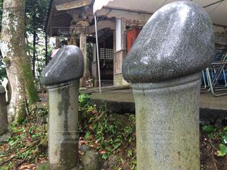 山口県の写真・画像素材[327797]