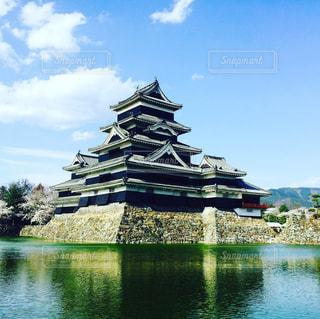 春の松本城の写真・画像素材[883291]