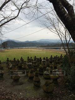熊本の写真・画像素材[327683]