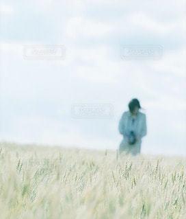 女性の写真・画像素材[7967]