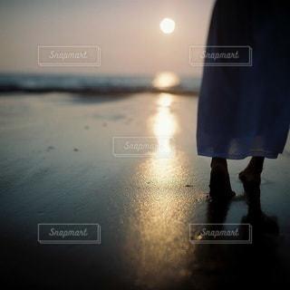 女性の写真・画像素材[7901]