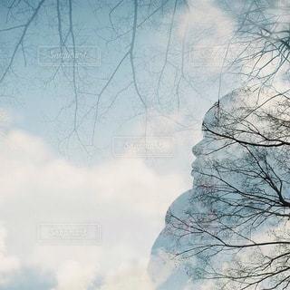 男性の写真・画像素材[7897]