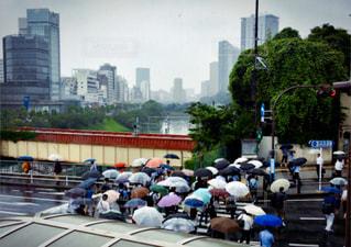 雨の写真・画像素材[588166]