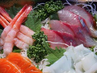 No.513935 魚