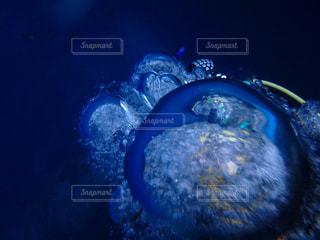 海の写真・画像素材[327486]