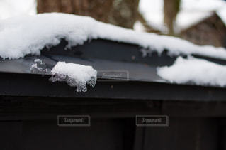 冬の写真・画像素材[376037]