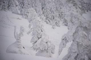 雪に覆われた山を背景に近くに立っている男の写真・画像素材[901397]