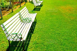 公園の写真・画像素材[345683]