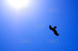 空の写真・画像素材[345685]