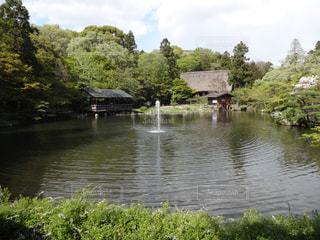 木々 に囲まれた水の体の写真・画像素材[1117000]