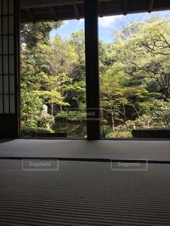 窓からの眺めの写真・画像素材[1117061]