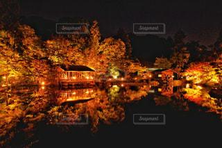 秋の夜景の写真・画像素材[2726917]