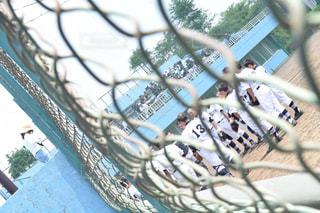 スポーツ - No.328118