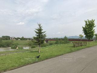 風景 - No.545710