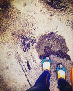 雨の写真・画像素材[329281]