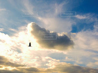 空の雲の写真・画像素材[813078]
