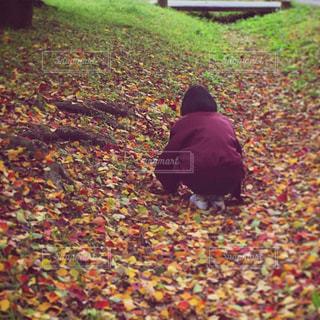 秋色の落ち葉に座る人の写真・画像素材[815799]