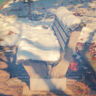 秋から冬への写真・画像素材[824847]