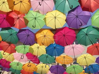 傘の写真・画像素材[329253]