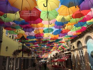 傘の写真・画像素材[329261]