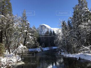 雪の写真・画像素材[329758]