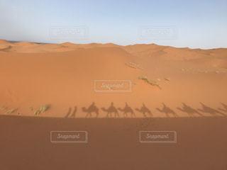 砂漠の写真・画像素材[1169191]