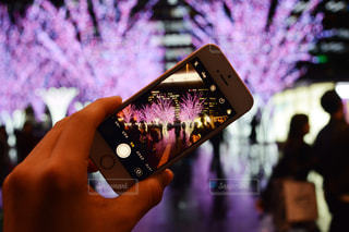 iPhone越しの桜イルミの写真・画像素材[1030398]