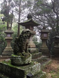 神社の写真・画像素材[329604]