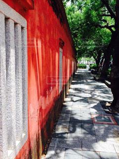赤の写真・画像素材[697218]