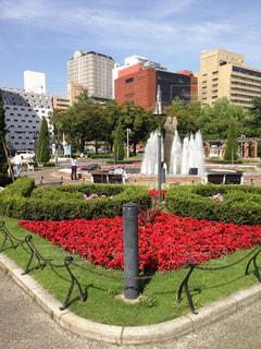 公園 - No.330859