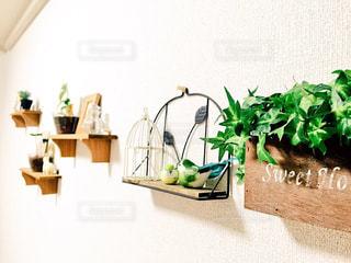 室内装飾の写真・画像素材[330835]