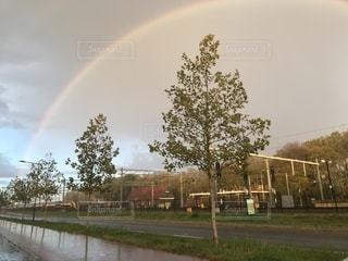 雨上がりの虹の写真・画像素材[1612378]