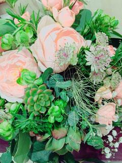 花の写真・画像素材[330901]
