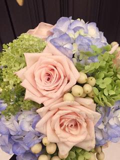 花の写真・画像素材[330907]