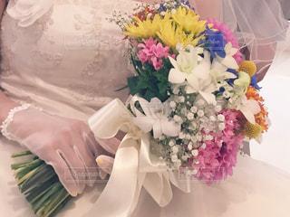 花の写真・画像素材[330908]