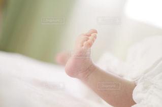 子どもの写真・画像素材[331148]
