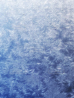 霜の結晶の写真・画像素材[996302]