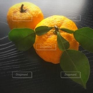 柚子♪の写真・画像素材[2756424]