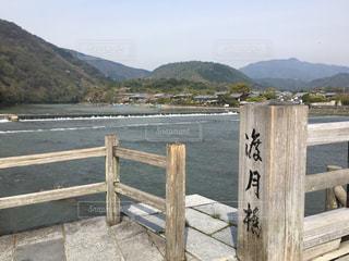 渡月橋の写真・画像素材[337034]