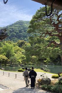 天龍寺の庭園の写真・画像素材[1593322]