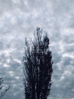 曇り空の写真・画像素材[1651620]