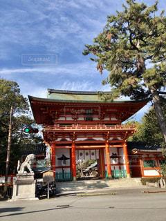 京都 今宮神社の写真・画像素材[1834121]